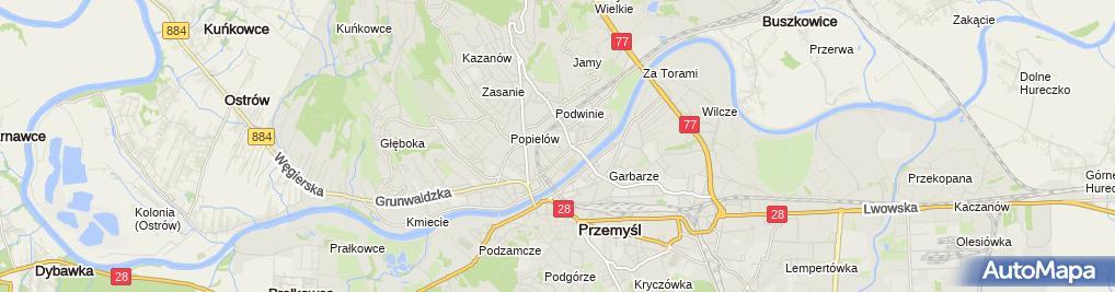 Zdjęcie satelitarne Wizyty Domowe