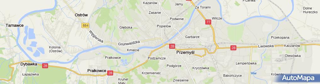 Zdjęcie satelitarne Wojciech Kowalski InterGEO