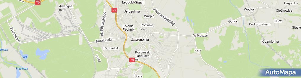 Zdjęcie satelitarne Wojciech Wioska - Działalność Gospodarcza
