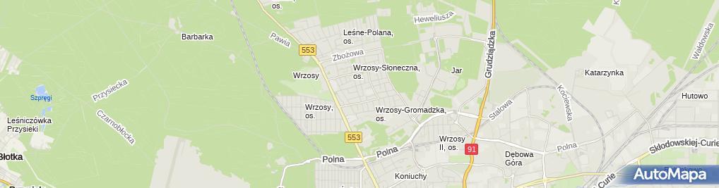 Zdjęcie satelitarne Wyroby z Drutu i Art Motoryzacyjne Stępiński Stanisław i Grzegorz