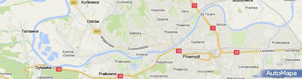 Zdjęcie satelitarne Zakład Ogrodniczy Jacek Malawski