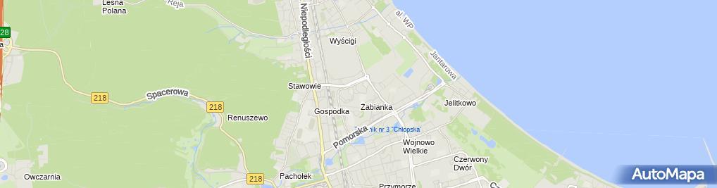 Zdjęcie satelitarne Zakład Usług Stoczniowych