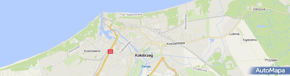 Zdjęcie satelitarne Zakład Usługowo-Handlowy Sklep nr 1 Hurt-Detal Wanda Młynarczyk