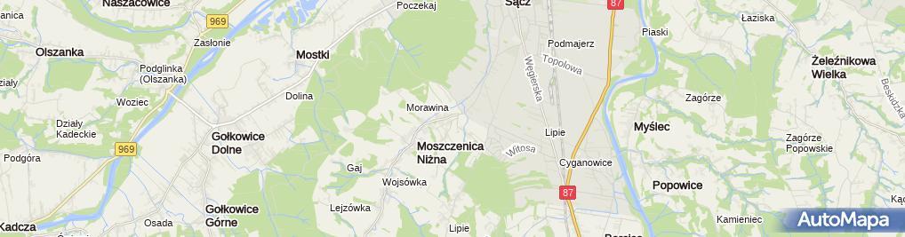 Zdjęcie satelitarne Niepubliczne w Moszczenicy Niżnej