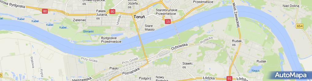 Zdjęcie satelitarne Panorama miasta