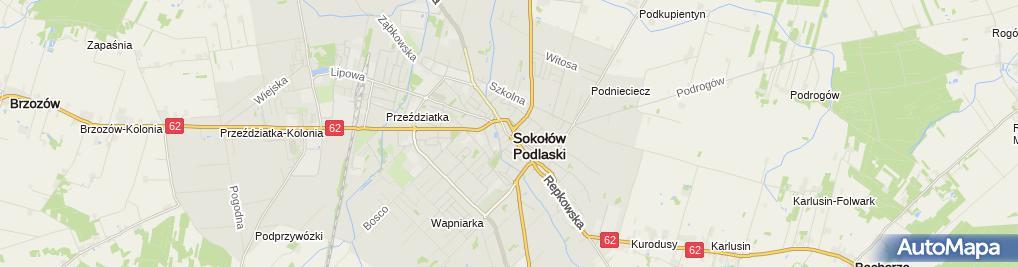 Zdjęcie satelitarne JOANNA POPOWSKA