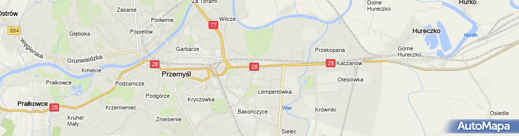 Zdjęcie satelitarne Lwowiak