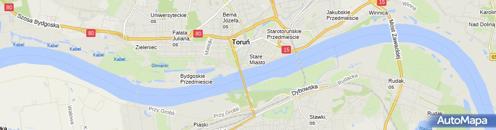Zdjęcie satelitarne Toruński Rower Miejski - stacja