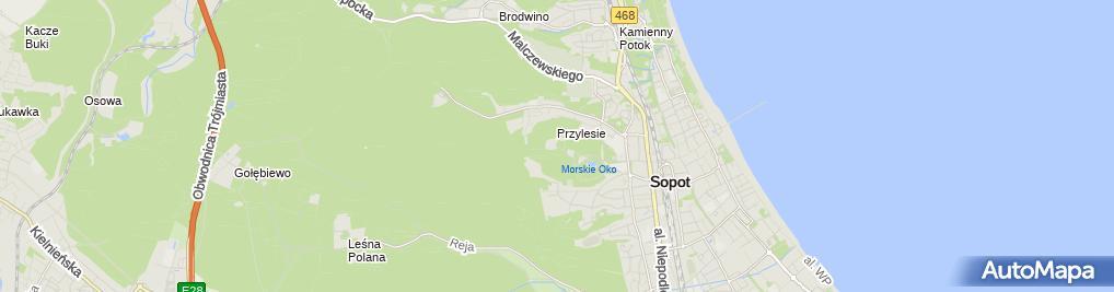 Zdjęcie satelitarne Bursztynowy Słowik