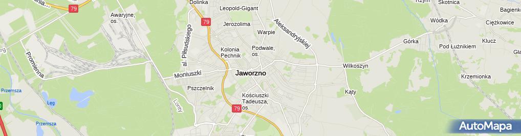 Zdjęcie satelitarne św. Wojciecha i św. Katarzyny - Kolegiata