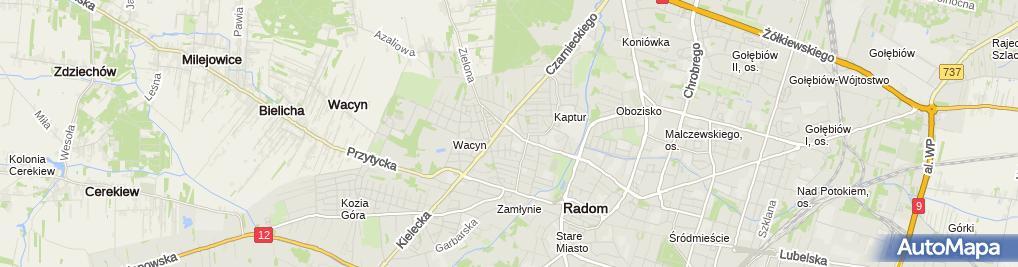 Zdjęcie satelitarne AMD Auto Centrum