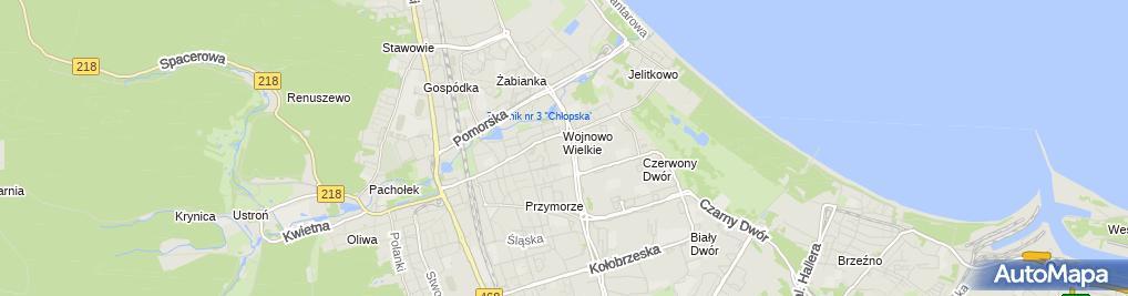 Zdjęcie satelitarne Sklep Spożywczo Przemysłowy Abc Halina Żywicka Mieczysław Kaferski