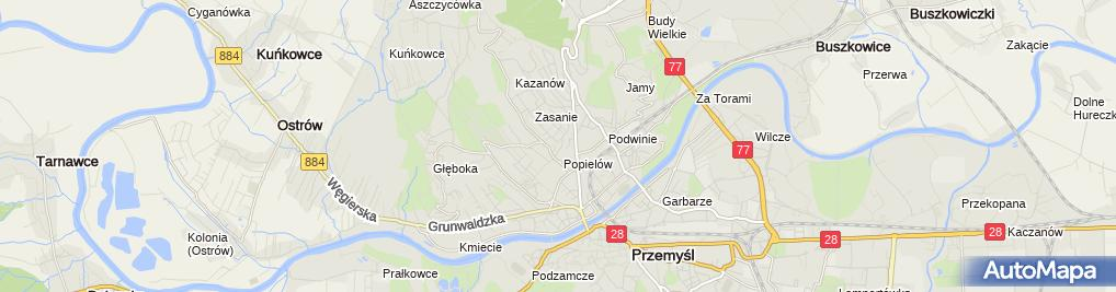 Zdjęcie satelitarne Diagnostyka - Rafalski Andrzej