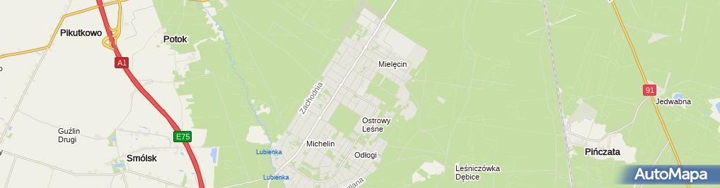 Zdjęcie satelitarne SP Nr 19