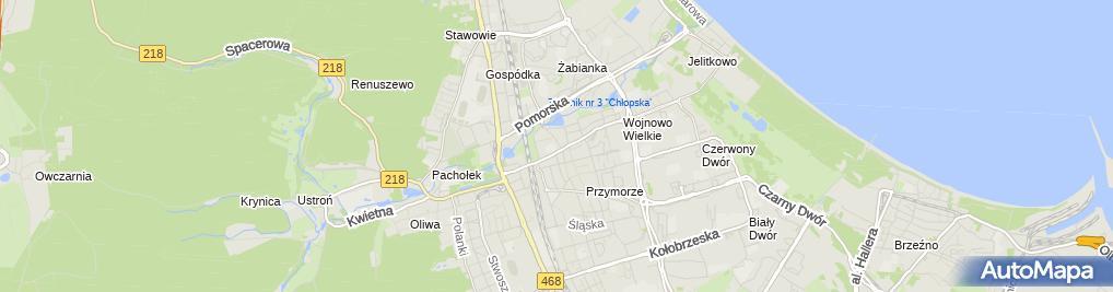 Zdjęcie satelitarne T.W. Moto