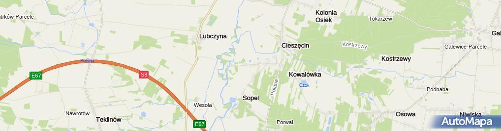Zdjęcie satelitarne Gabinet Weterynaryjny Kowalówka Dariusz Sowiński