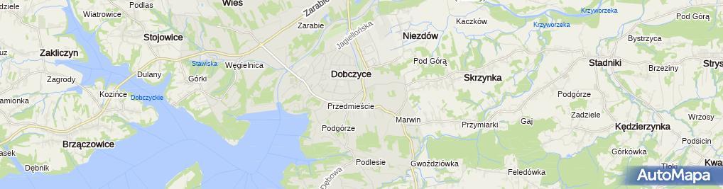 Zdjęcie satelitarne Gabinet Weterynaryjny