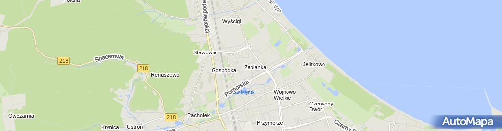 Zdjęcie satelitarne Przychodnia Weterynaryjna