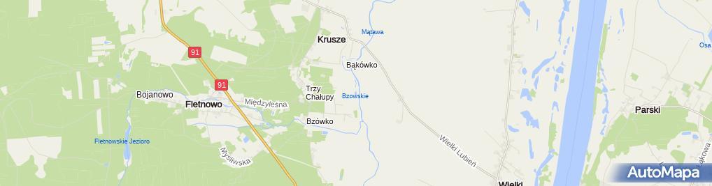 Zdjęcie satelitarne Jezioro Bzowskie