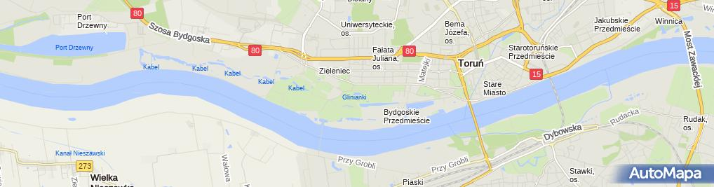 Zdjęcie satelitarne staw Glinianki