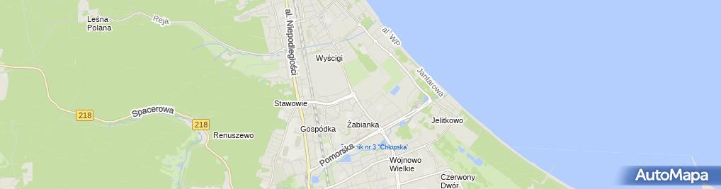 Zdjęcie satelitarne GdanskSopot ErgoArena 20100619