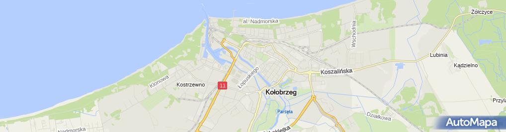 Zdjęcie satelitarne Kołobrzeg - Parsęta zimą2