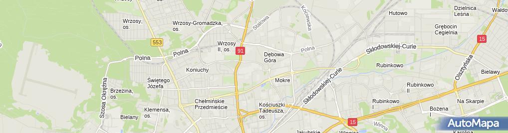 Zdjęcie satelitarne Miasta partnerskie Torunia