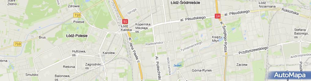Zdjęcie satelitarne Pomnik Stefanowskiego Lodz