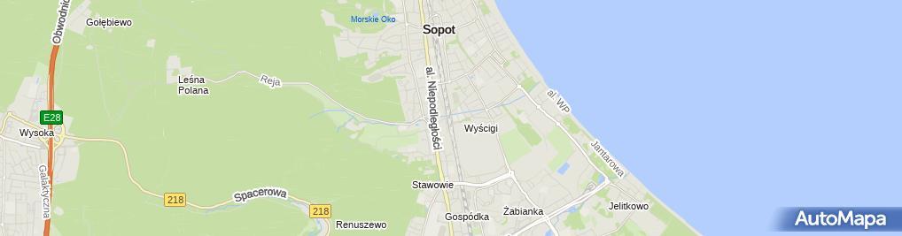 Zdjęcie satelitarne SKM Sopot Wyścigi 01