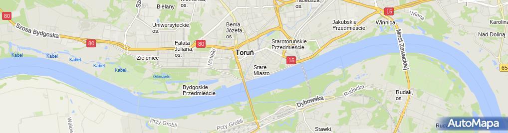 Zdjęcie satelitarne Torun Dwor Artusa detal 01