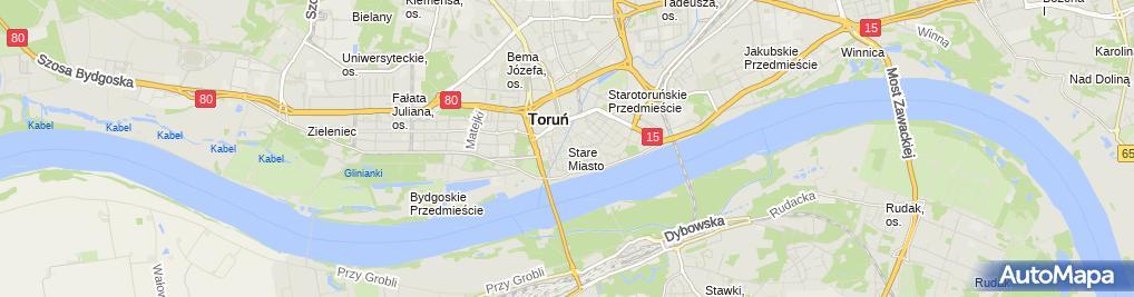 Zdjęcie satelitarne Torun pomnik Flisaka