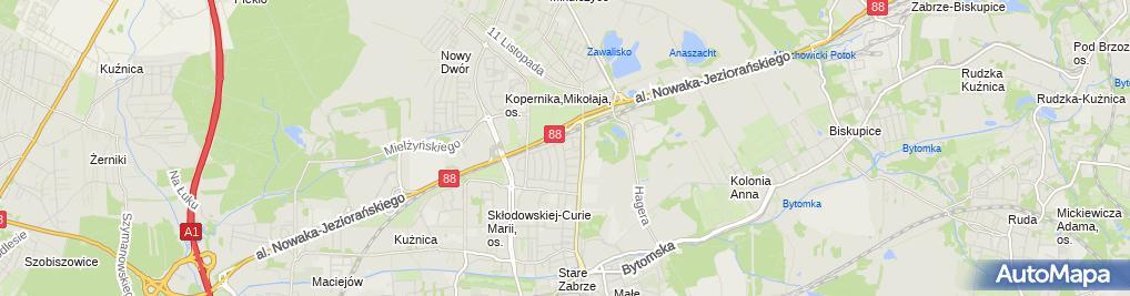 Zdjęcie satelitarne Zabrze Poznańska 24 03 2010 P3248543