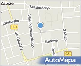 Cmentarz żydowski w Zabrzu15