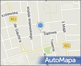 Szkoła Podstawowa nr 43 im. Leona Kruczkowskiego w Zabrzu (Nemo5576)