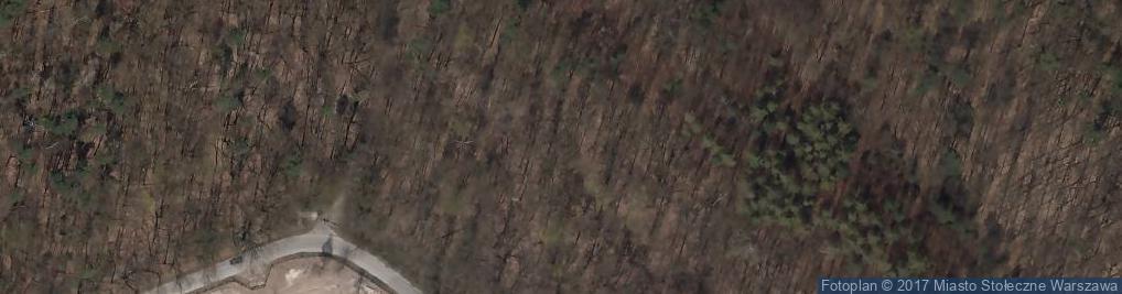 Zdjęcie satelitarne Katastrofa lotnicza w Lesie Kabackim