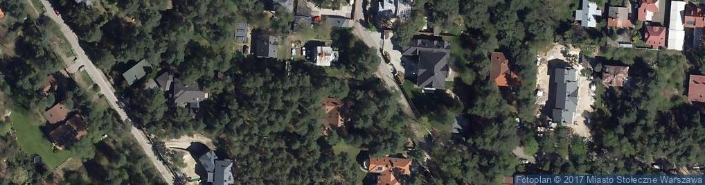 Zdjęcie satelitarne Park Polińskiego