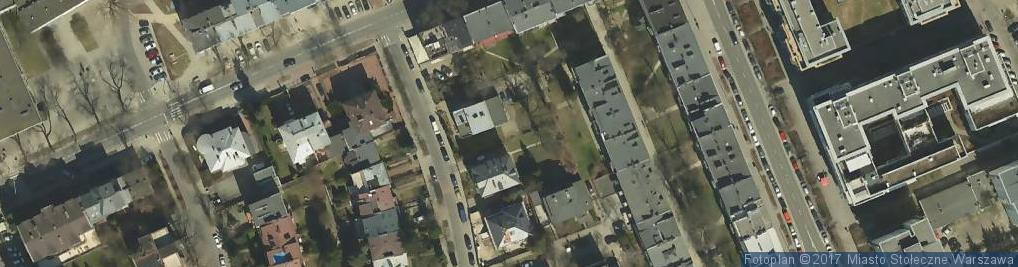 Zdjęcie satelitarne Dąb szypułkowy
