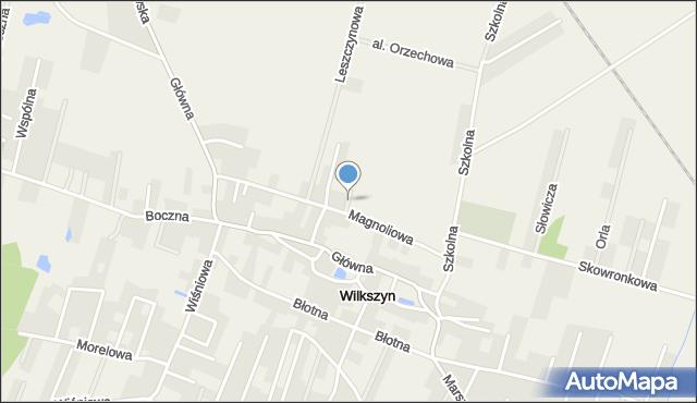 Wilkszyn, Akacjowa, mapa Wilkszyn
