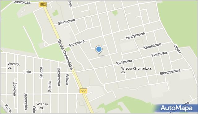 Toruń, Astrowa, mapa Torunia