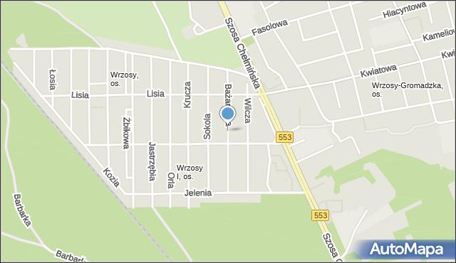 Toruń, Bażantowa, mapa Torunia