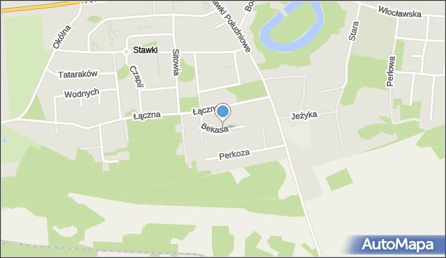 Toruń, Bekasa, mapa Torunia