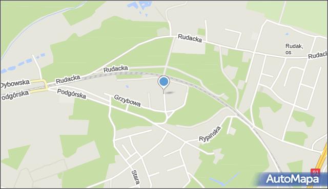 Toruń, Borowikowa, mapa Torunia