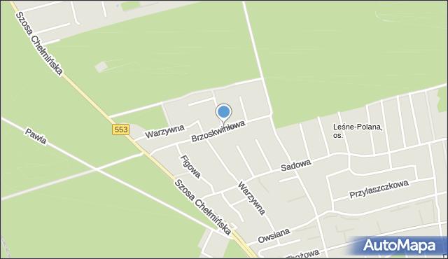 Toruń, Brzoskwiniowa, mapa Torunia