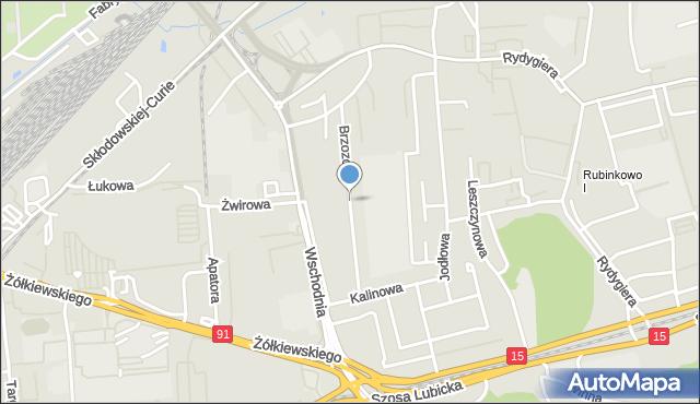 Toruń, Brzozowa, mapa Torunia