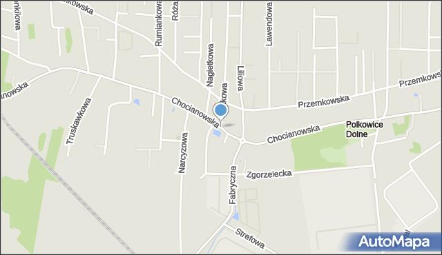 Polkowice, Chocianowska, mapa Polkowice