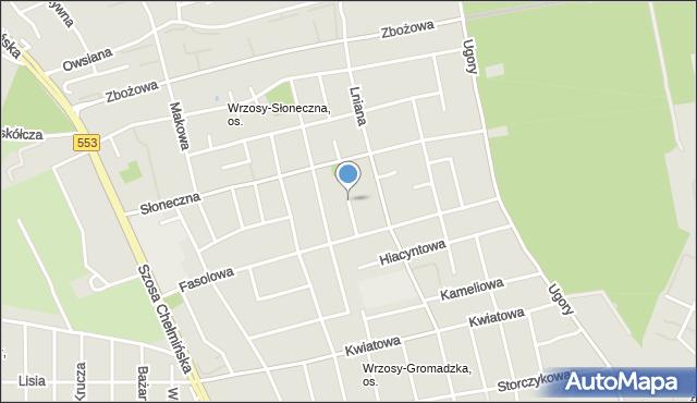 Toruń, Chmielna, mapa Torunia