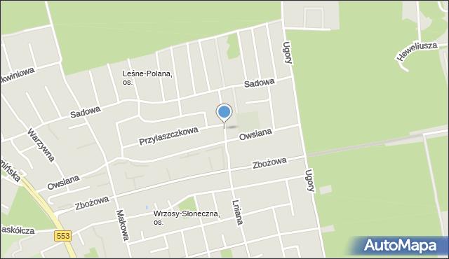 Toruń, Czeremchowa, mapa Torunia