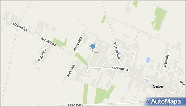 Gałów, Daktylowa, mapa Gałów