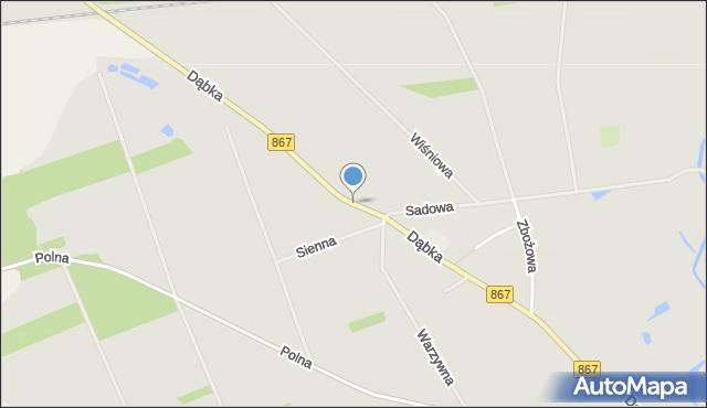 Lubaczów, Dąbka Stanisława, płk., mapa Lubaczów