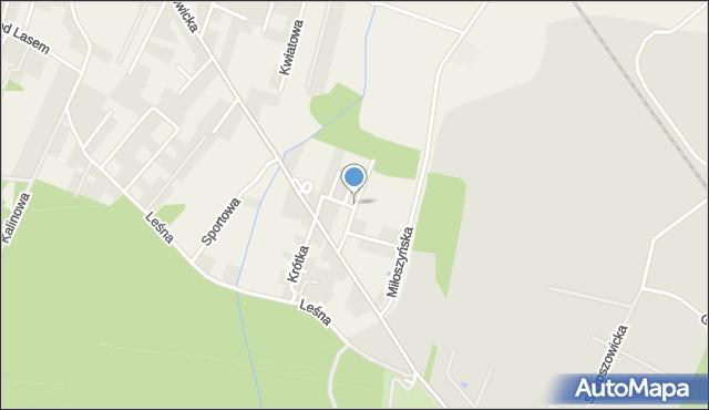 Wilkszyn, Dębowa, mapa Wilkszyn